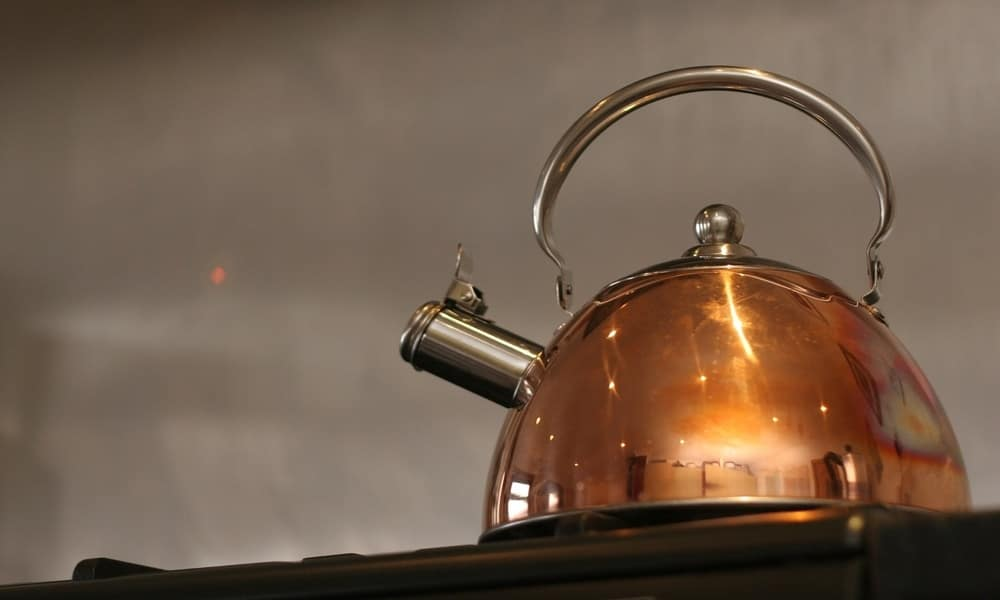 Top 5 Best Stovetop Kettles of 2021